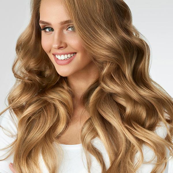 brands lutz fl hair salon